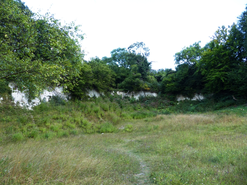 Hurley chalk pit